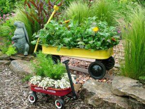 Wagon-Garden